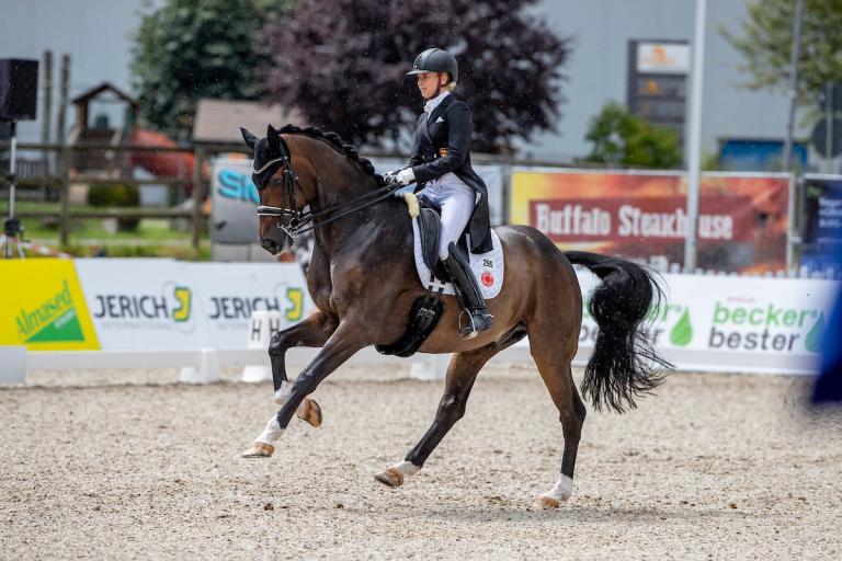 Donaueschingen: Ferdinand BB und Diesel im Louisdor-Preis-Finale